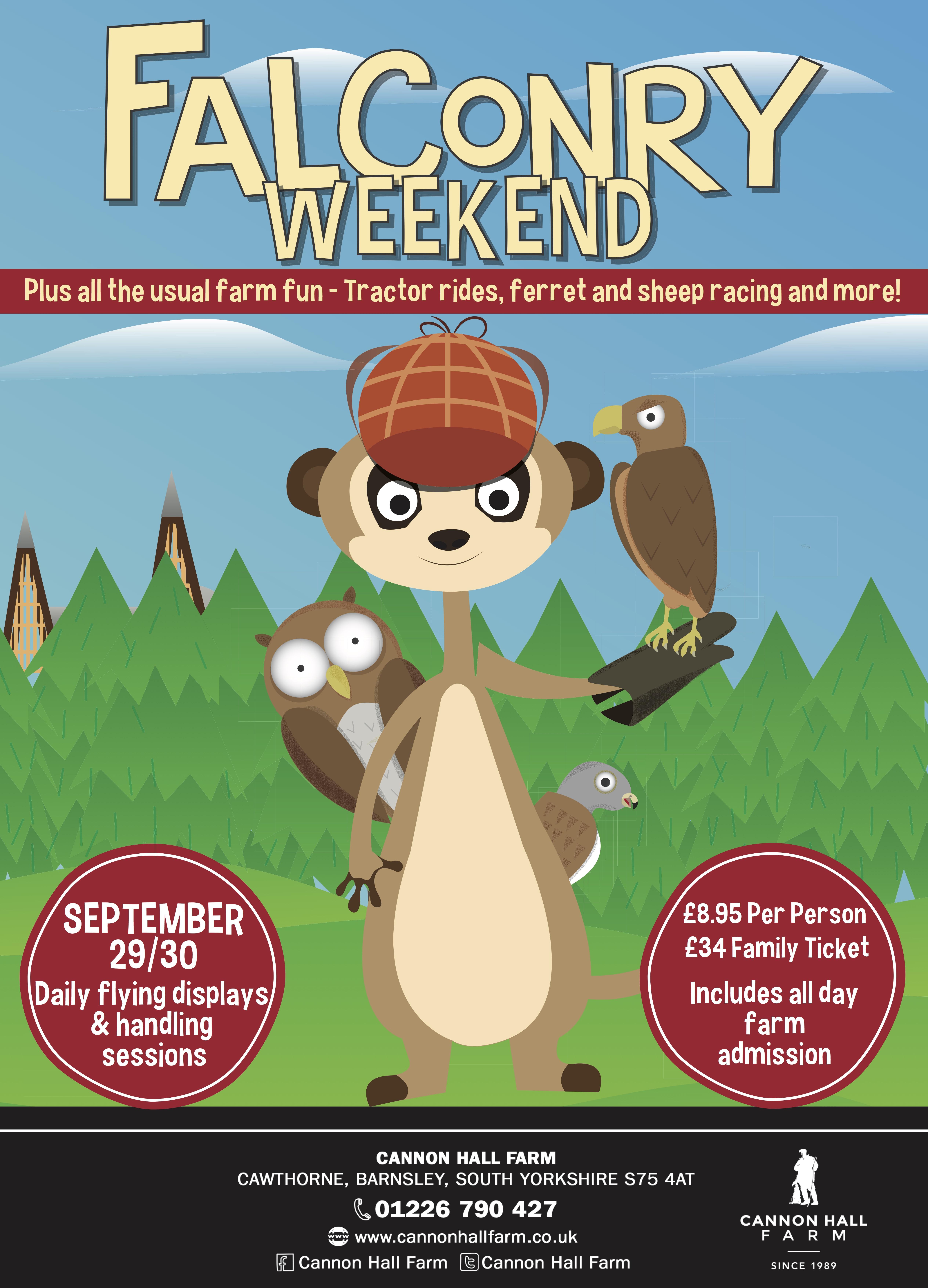 Falconry Weekend Web