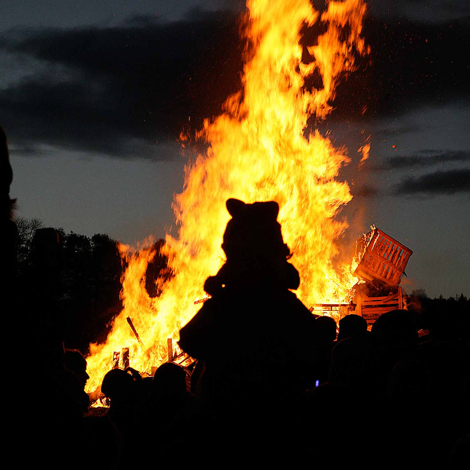 Bonfire-2014