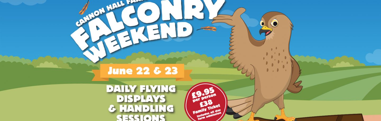 Falconry weekend