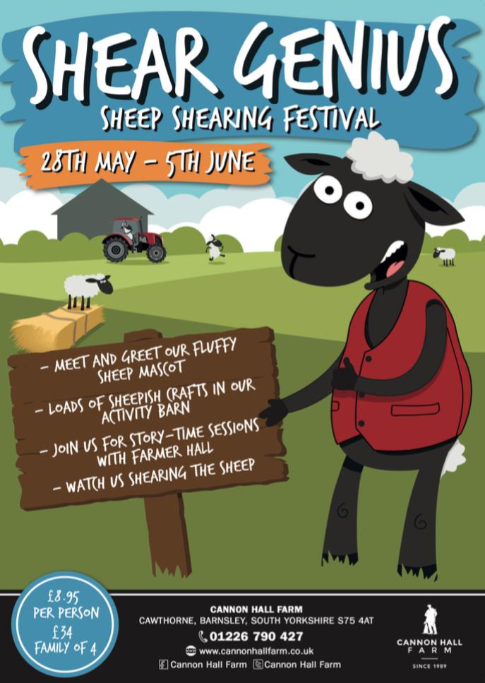 Website Sheep Shearing