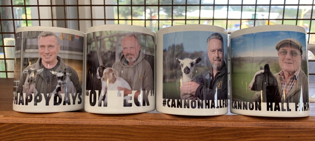 mugs in gift shop